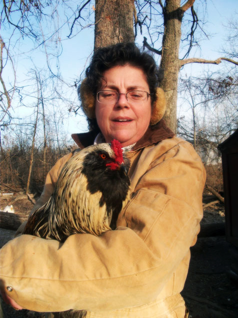 Mom with Aracauna Rooster